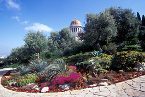 gardens surround the Shrine of The Bab